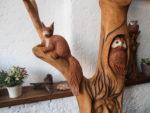 Detail veverky